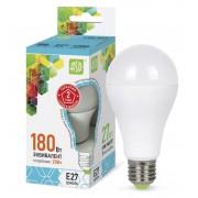 Лампа светодиодная LED-A65 (A60) standart 20Вт Е27 4000К 1800Лм ASD